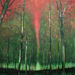 forest edge 200 x 230cm